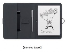 Bamboo Spark