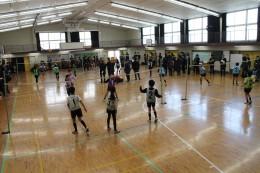 東京学芸大学附属小金井小学校の体育の授業