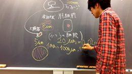 矢口はっぴー式 わかりやすい高校生物基礎演習・生物演習