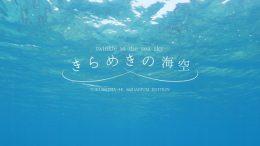 「きらめきの海空 TOKUSHIMA 4K AQUARIUM EDITION」のワンシーン