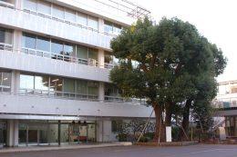 昭和小学校の校舎